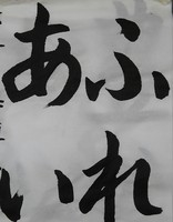 KIMG3379~2.JPG
